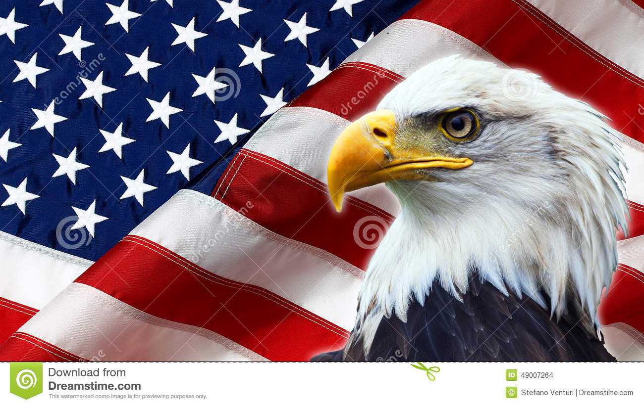 northamericanbaldeagleamericanflagbackground49007264